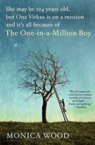 The One-in-a-Million Boy - Moncia Wood